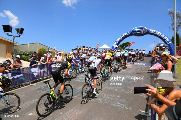 4th Cadel Evans Great Ocean Road Race 2018 / Men Peloton / Challambra Crescent / Geelong Waterfront Geelong Waterfront / Great Ocean Road Race /