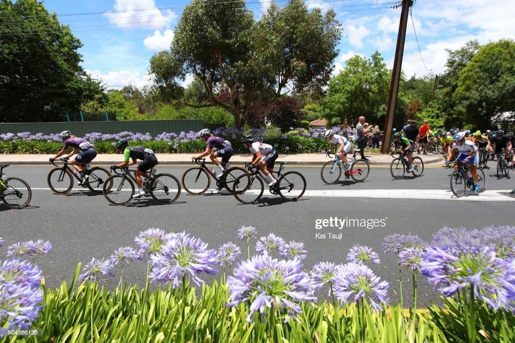 4th Santos Women's Tour 2018 / Stage 3 Peloton / Eri YONAMINE (JPN)/ Kate MCILROY (NZL)/ Marta TAGLIAFERRO (ITA)/ Lauren KITCHEN (AUS)/ The Bend Motorsport Park - Hahndorf (122,4km) / Women / TDU /