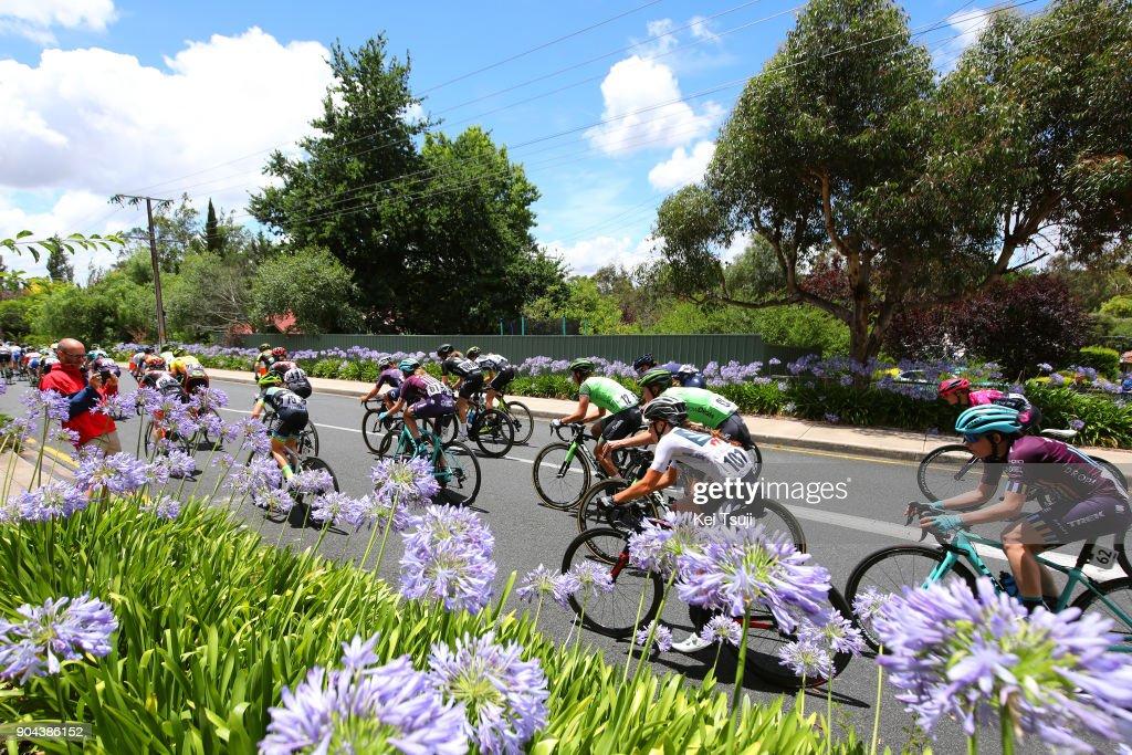 4th Santos Women's Tour 2018 / Stage 3 Peloton / Grace ANDERSON (NZL) White Best Young Rider Jersey / The Bend Motorsport Park - Hahndorf (122,4km) / Women / TDU /