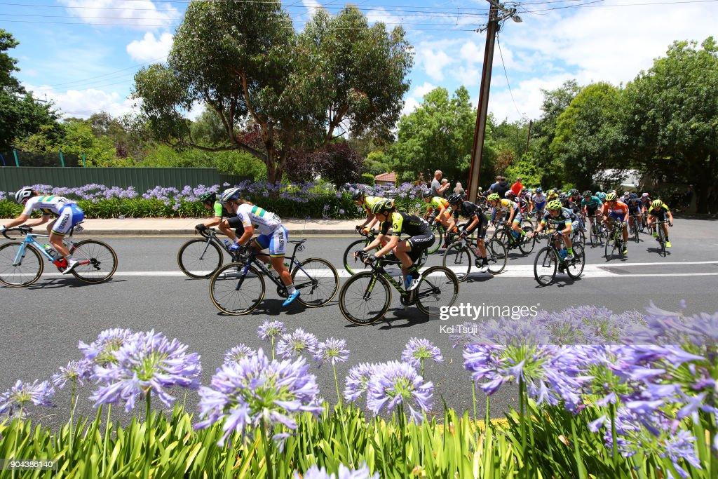 4th Santos Women's Tour 2018 / Stage 3 Peloton / Lauretta HANSON (AUS)/ Sarah ROY (AUS)/ The Bend Motorsport Park - Hahndorf (122,4km) / Women / TDU /