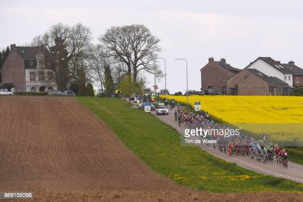 52nd Amstel Gold Race 2017 / Men Peloton / Flowers / Landscape / Maastricht Valkenburg / Men /