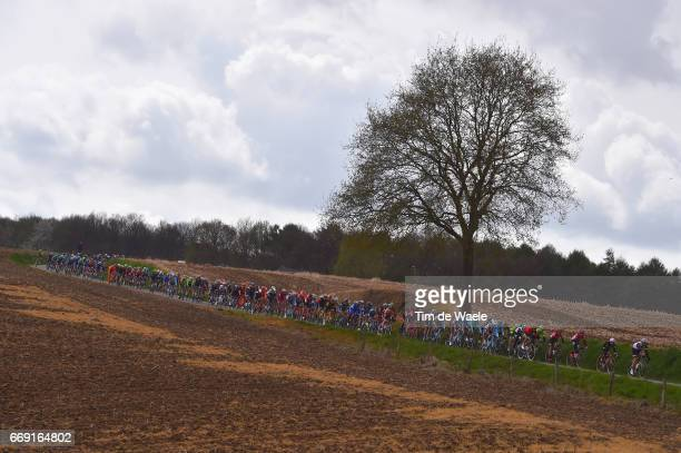 52nd Amstel Gold Race 2017 / Men Peloton / Landscape / Maastricht Valkenburg / Men /