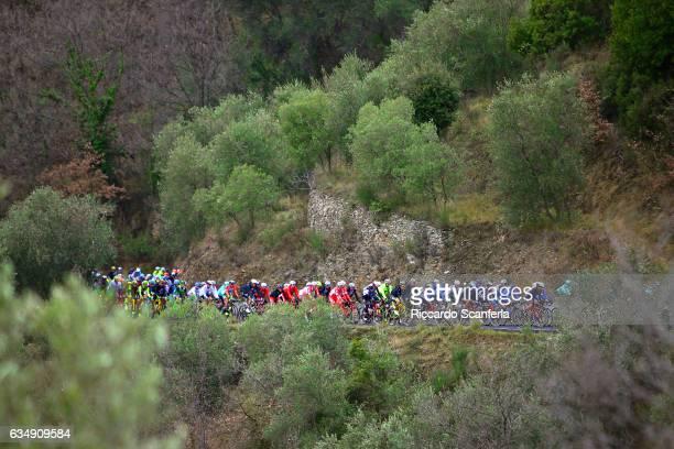 54th Trofeo Laigueglia 2017 Landscape / Peloton / Forest / Laigueglia Laigueglia /