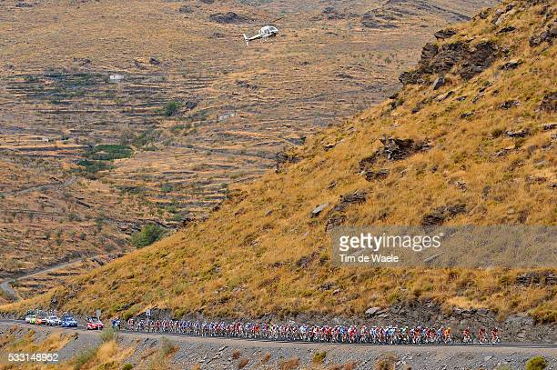Cycling 64th Tour of Spain Vuelta / Stage 12 Illustration Illustratie / Peleton Peloton / Bull Toro Stier Vache / Landscape Paysage Landschap /...
