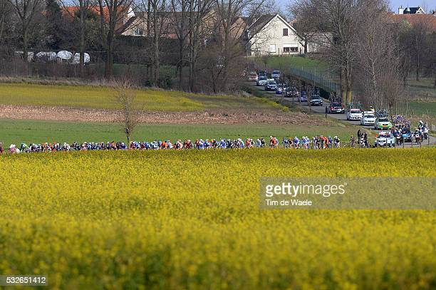 66th Kuurne - Brussels - Kuurne 2014 Illustration Illustratie / Peleton Peloton / Flowers Fleur Bloemen / Landscape Paysage Landschap / Kuurne -...