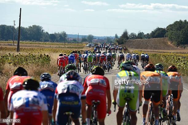 68th Tour of Spain 2013 / Stage 17 Illustration Illustratie / Peleton Peloton / Bordures Echelons Waaiers / Calahorra - Burgos / Vuelta Ronde van...