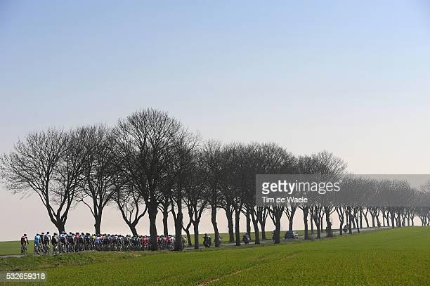 72th Paris - Nice 2014 / Stage 2 Illustration Illustratie / Peleton Peloton / Forest Bois Bos Field Champ Veld / Landscape Paysage Landschap /...