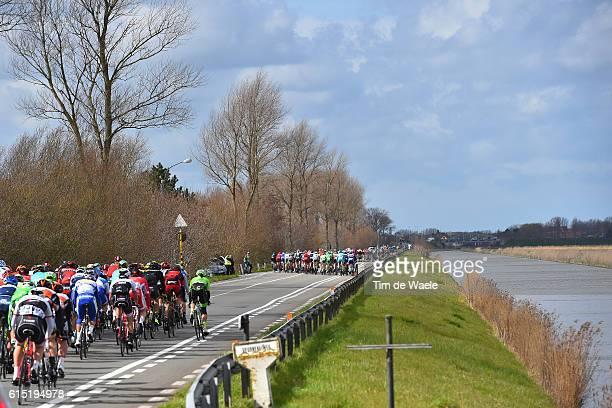 78th Gent - Wevelgem 2016 Illustration Illustratie / Peleton Peloton / Landscape Paysage Landschap / Gent - Wevelgem / Ghent Gand Flanders Classics /...