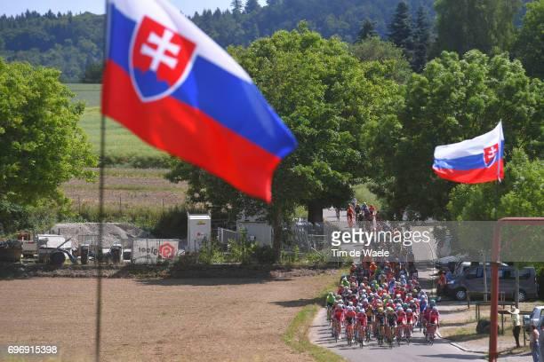 81st Tour of Switzerland 2017 / Stage 8 Landscape / Peloton / Slovakia flag/ Schaffhausen Schaffhausen / TDS/
