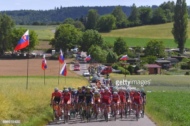 81st Tour of Switzerland 2017 / Stage 8 Landscape / Simon SPILAK Yellow Leader Jersey / Peloton / Slovakia flag/ Schaffhausen Schaffhausen / TDS/