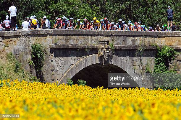 97th Tour de France 2010 / Stage 14 Illustration Illustratie / Peleton Peloton / Sun Flowers Tournesolles Zonnebloem / Landscape Paysage Landschap /...
