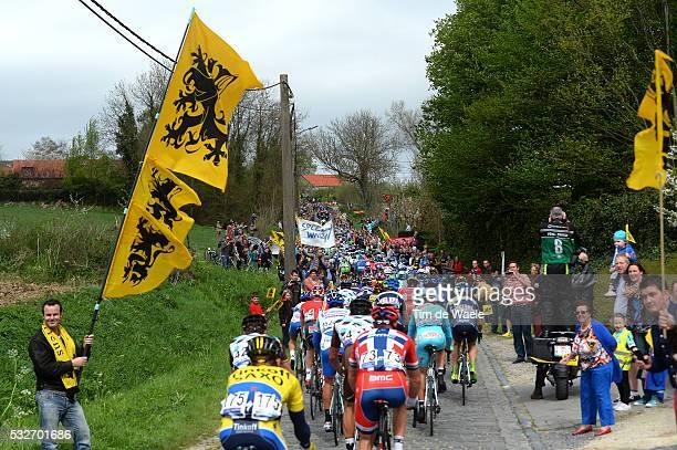98th Tour of Flanders 2014 Illustration Illustratie / Peleton Peloton / Eikenberg / Public Publiek Spectators Fans Supporters / Flag Drapeau Vlag /...