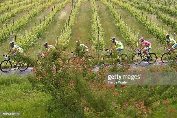 98th Tour of Italy 2015 / Stage 11 Illustration Illustratie/ Team Tinkoff-Saxo / CONTADOR Alberto Pink Leader Jersey/ Vineyards/ Forli - Imola / Giro...