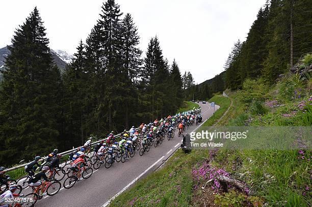 98th Tour of Italy 2015 / Stage 16 Illustration Illustratie/ Peloton Peleton/ Landscape Paysage/ Pinzolo- Aprica / Giro Tour Ronde van Italie / Rit...