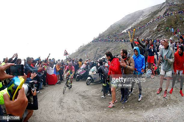 98th Tour of Italy 2015 / Stage 20 CONTADOR Alberto Pink Leader Jersey / Illustration Illustratie / COLLE DELLE FINESTRE Mountains Montagnes Bergen /...