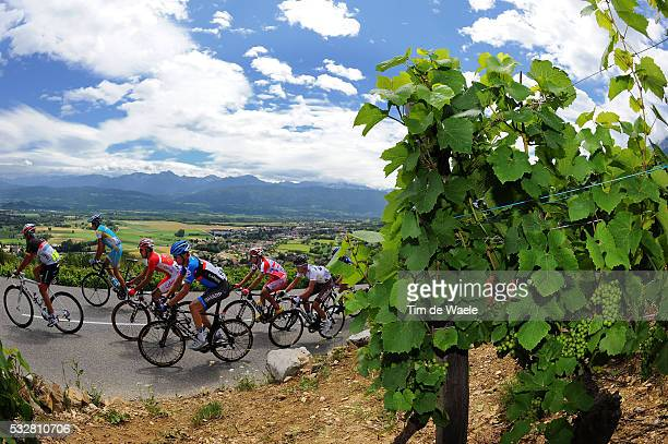 99th Tour de France 2012 / Stage 12 Illustration Illustratie / Vinyards Vignobles Wijngaard Grapes Resain Druiven / Peleton Peloton / David Millar /...