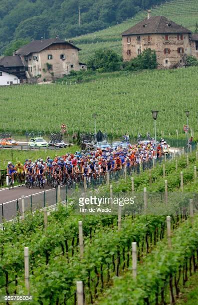 Giro D'Italia, Tour Of Italy Stage 14Illustration Illustratie, Peleton Peloton Landscape Paysage Wine Grads Vignobles Wijngaardstage 14 :...