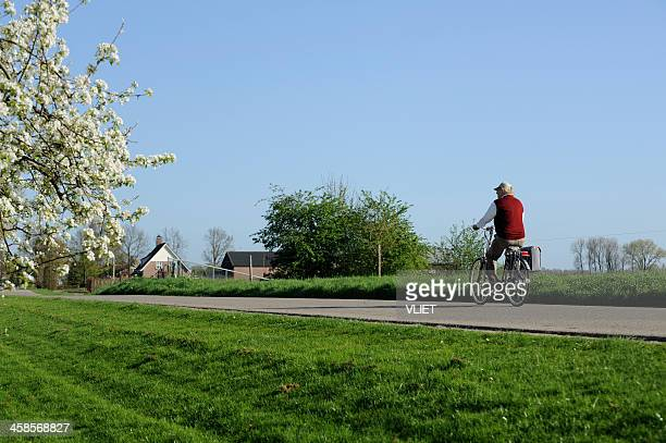 cycling man on a dyke road in the netherlands - gelderland stock pictures, royalty-free photos & images