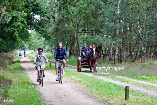 cycling - overijssel stock pictures, royalty-free photos & images