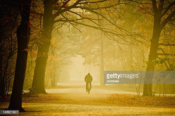 Cycling-Internetverbindung im Nebel in Country Road