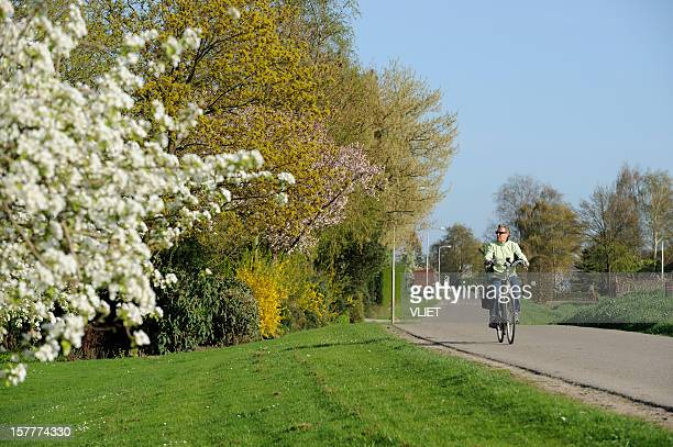 cycling woman on a dyke road in the netherlands - gelderland stock pictures, royalty-free photos & images