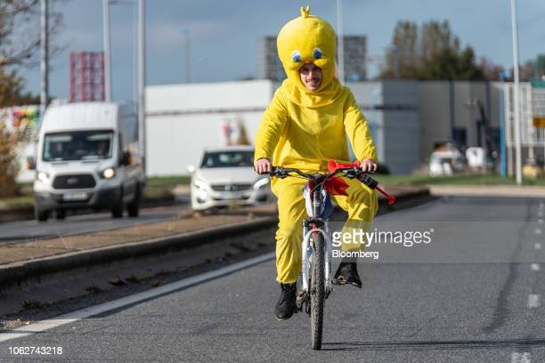 Cyclist dressed in a Tweety Pie costume rides a bicycle on an empty road during a protest against fuel costs near Rodez, France, on Saturday, Nov....