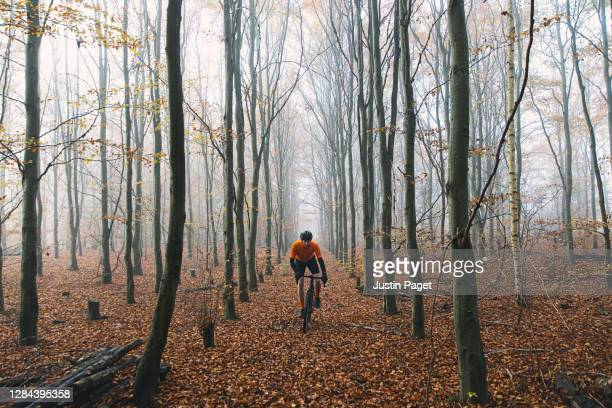 cyclist in autumnal woodland - escaping stock pictures, royalty-free photos & images