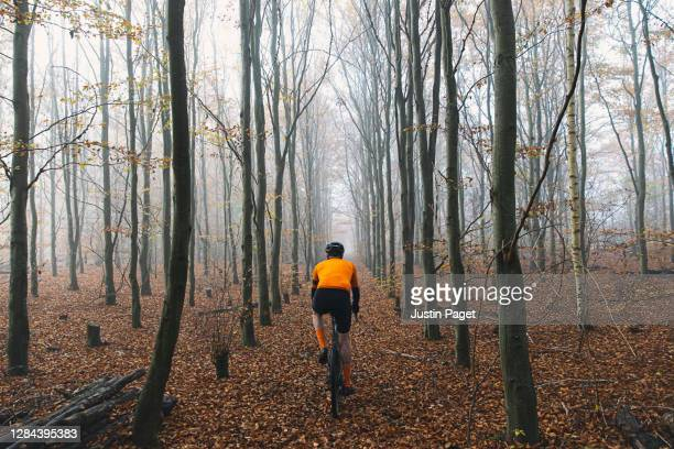 cyclist in autumnal woodland - fog stock pictures, royalty-free photos & images