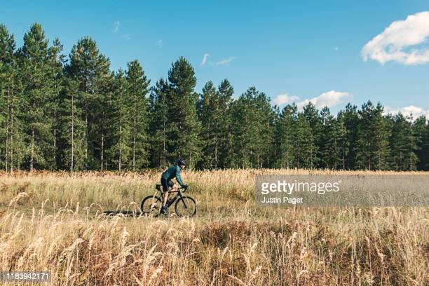 cyclist in forest - landscape stock pictures, royalty-free photos & images