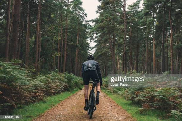 cyclist on forest path - bicycle stock pictures, royalty-free photos & images