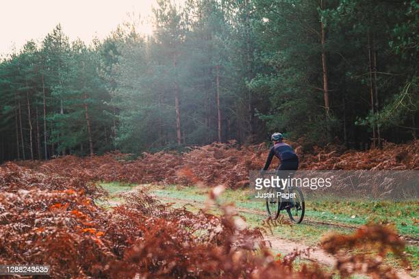 cyclist on gravel bike in autumnal forest - one mid adult man only stock pictures, royalty-free photos & images
