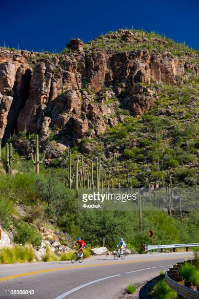 a cyclist on mountain road in mt lemmon near tucson arizona - mt lemmon stock photos and pictures