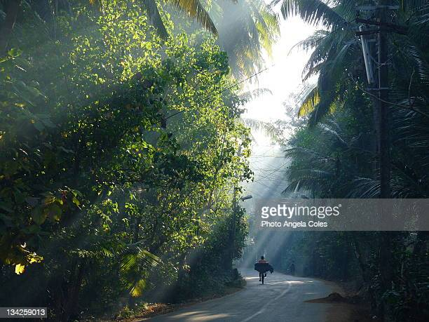 cyclist on road - goa stock photos and pictures
