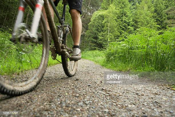 Cyclist on track in countryside, low section