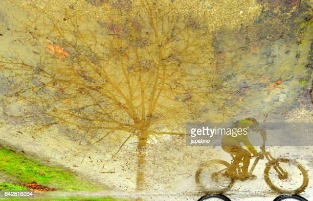 Cyclist reflected in a puddle