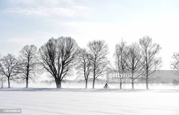 A cyclist rides along a snowcovered alley near the small Bavarian village of Eichenau near Munich southern Germany during nice foggy winter weather...