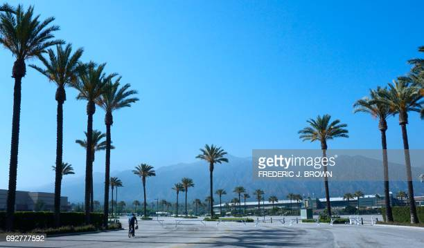 A cyclist rides past a row of palm trees in Arcadia California on June 5 2017 looking toward the San Gabriel Mountains Despite the diverse and...