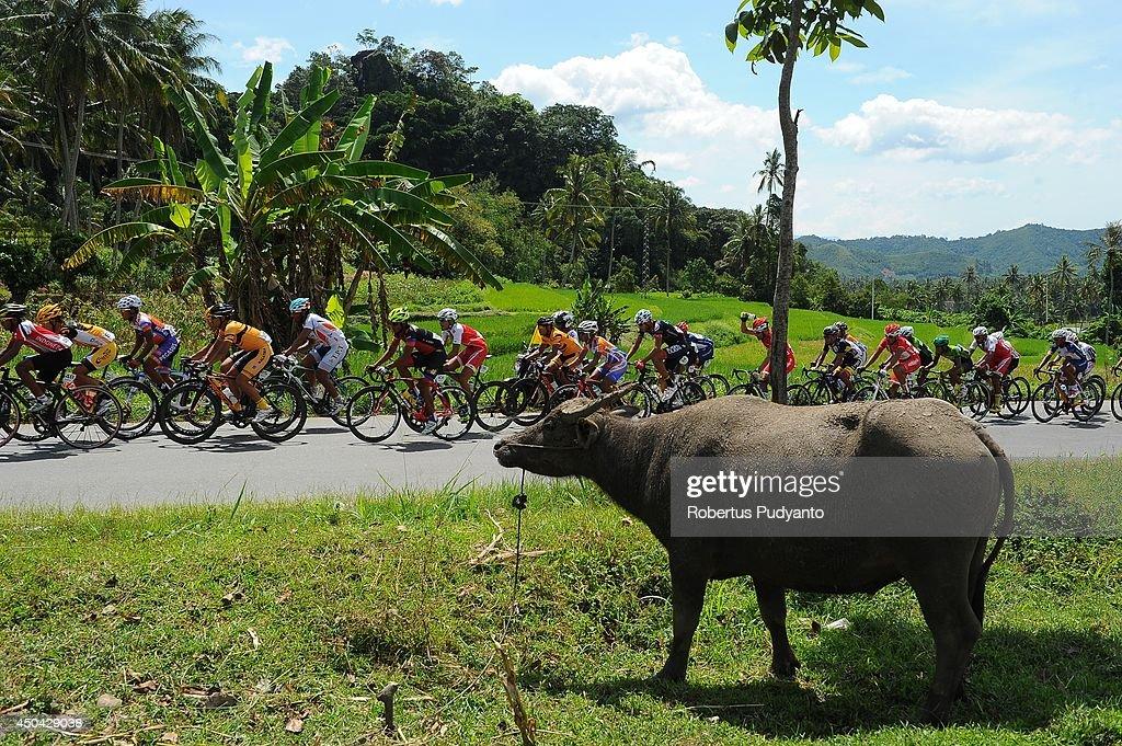 Cyclists compete during stage 5 of the 2014 Tour de Singkarak from Ngalau Indah (Payakumbuh City) to Lake Singkarak (Solok) on June 11, 2014 in Padang, Indonesia.