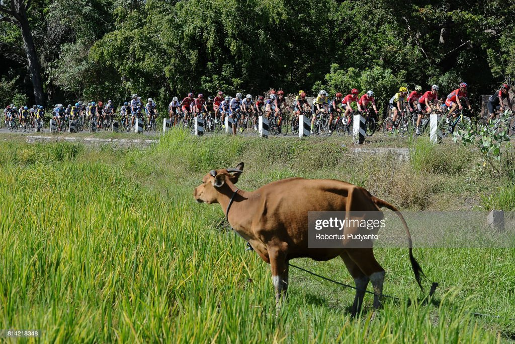 Cyclists compete during the Stage 1 of Tour de Flores 2017, Larantuka-Maumere 136.3 km on July 14, 2017 in Larantuka, Flores, Indonesia.
