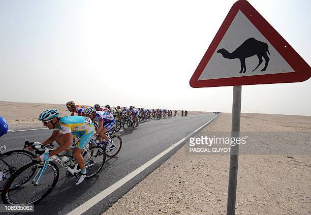Cyclists compete past a camel crossing road sign during the 1505 km third stage run from Al Wrakra to Mesaieed during the 2011 Tour of Qatar cycling...