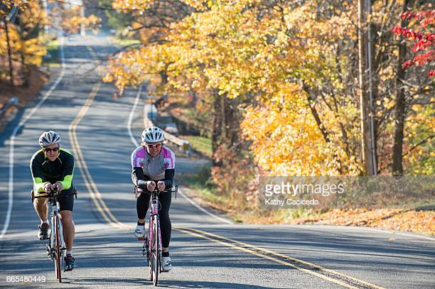 Cyclists cycling side by side on tree lined road