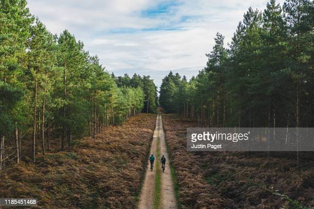 cyclists on forest track - riding stock pictures, royalty-free photos & images