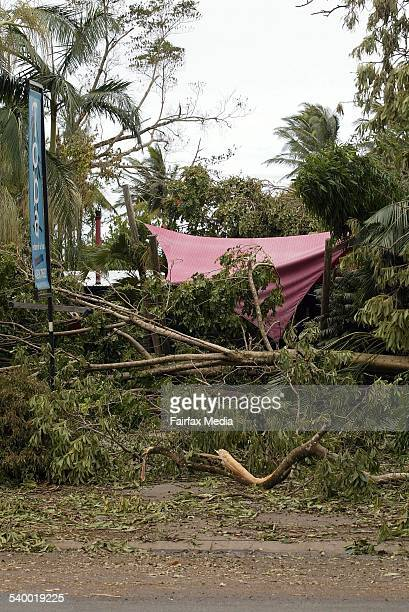 Cyclone Larry Fallen trees cover the entrance to the Toba restaurant at Mission Beach Queensland damaged durring Cyclone Larry 22 March 2006 AFR...