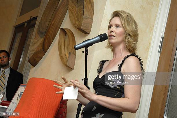 Cynthia Nixon during Women's Leadership Forum of The Democratic National Committee Meeting In New York City July 11 2006 at Art Et Maison in New York...