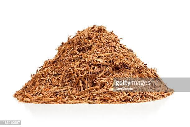 Cypress Laubdecke