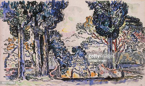 Cypresses in SainteAnne Private Collection
