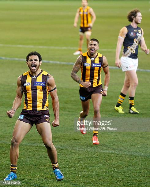 Cyril Rioli of the Hawks celebrates a goal during the 2015 AFL round 18 match between the Hawthorn Hawks and the Richmond Tigers at the Melbourne...
