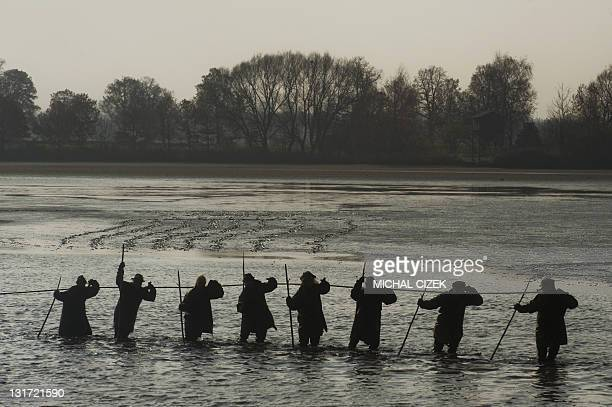 Czech fishermen pull a net early in the morning on November 7 during the annual fishing season at the Bosilecky pond beside the Bosilec village near...