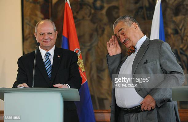 Czech Foreign minister Karel Schwarzenberg gestures after his joint press conference with Serbian Foreign Minister Ivan Mrkic on November 5 in Prague...