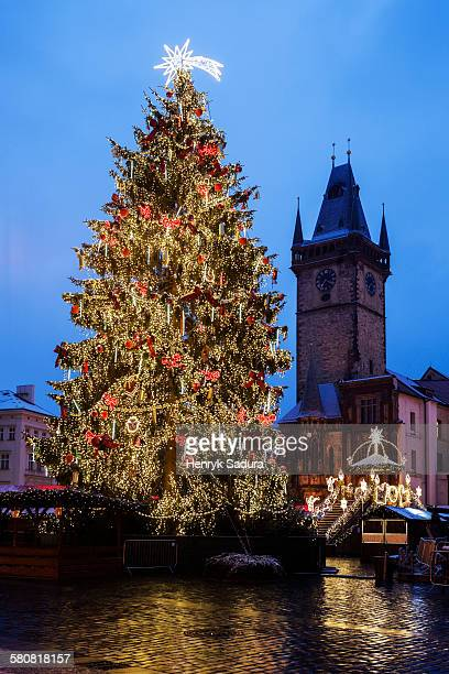 Czech Republic, Prague, Christmas tree at night